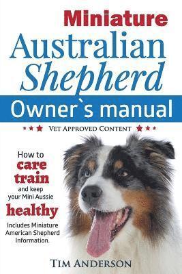 Miniature Australian Shepherd 1