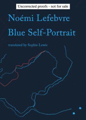 bokomslag Blue Self-Portrait