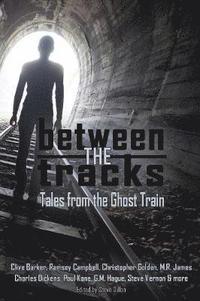 bokomslag Between the Tracks