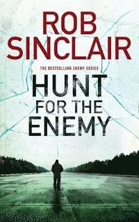 bokomslag Hunt for the Enemy