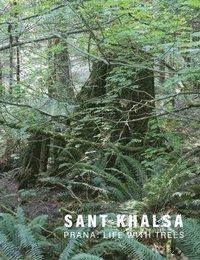 bokomslag Sant Khalsa