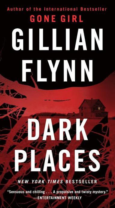 bokomslag Dark Places