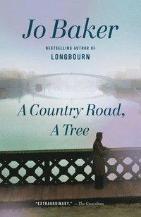 bokomslag Country road, a tree