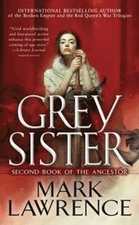 bokomslag Grey Sister