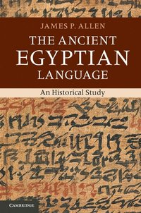 bokomslag The Ancient Egyptian Language