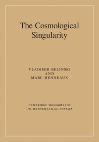 bokomslag Cosmological singularity