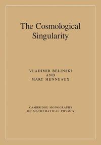 bokomslag Cosmological singularity