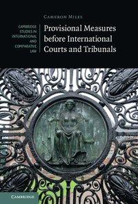 bokomslag Provisional Measures before International Courts and Tribunals