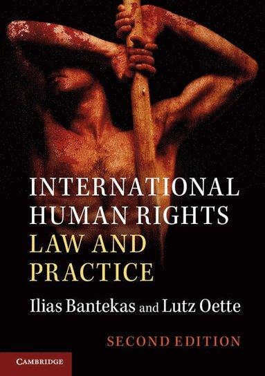bokomslag International Human Rights Law and Practice