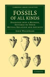 bokomslag Fossils of All Kinds
