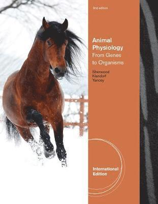 bokomslag Animal physiology - from genes to organisms, international edition