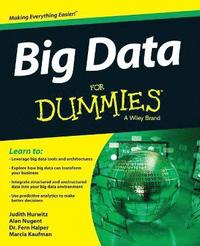 bokomslag Big Data For Dummies
