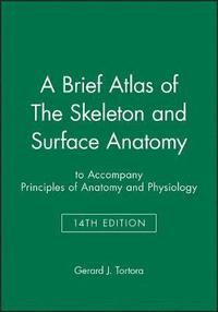 bokomslag A Brief Atlas of The Skeleton and Surface Anatomy to accompany Principles of Anatomy and Physiology, 14e