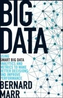 bokomslag Big Data: Using SMART Big Data, Analytics and Metrics To Make Better Decisions and Improve Performance