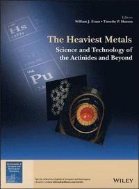 bokomslag The Heaviest Metals