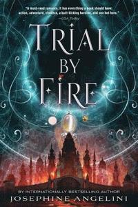 bokomslag Trial by Fire
