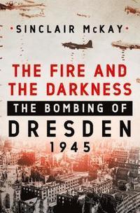 bokomslag Fire & The Darkness
