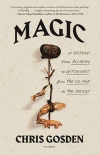 bokomslag Magic: A History: From Alchemy to Witchcraft, from the Ice Age to the Present