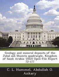 bokomslag Geology and Mineral Deposits of the Jabal Ash Shumta Quadrangle, Kingdom of Saudi Arabia