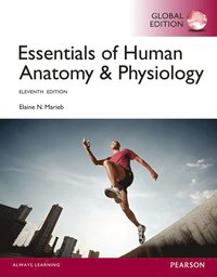 bokomslag Essentials of Human Anatomy & Physiology with Mastering A&P
