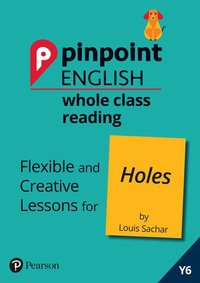 bokomslag Pinpoint English Whole Class Reading Y6: Holes