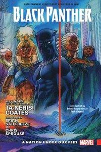 bokomslag Black Panther Vol. 1: A Nation Under Our Feet