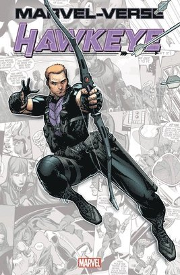 Marvel-verse: Hawkeye 1