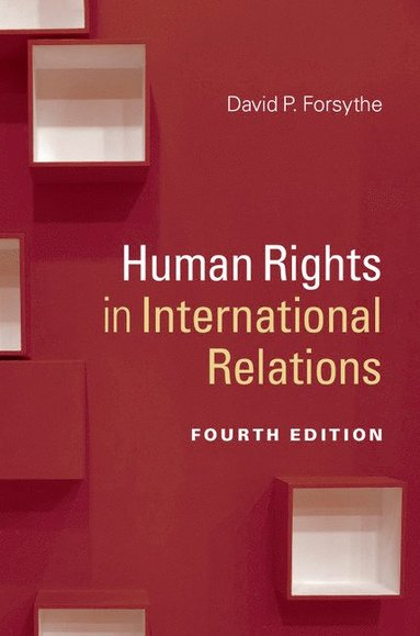 bokomslag Human Rights in International Relations