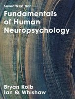 bokomslag Fundamentals of Human Neuropsychology