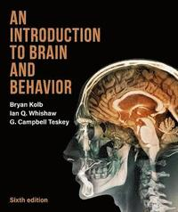 bokomslag An Introduction to Brain and Behavior