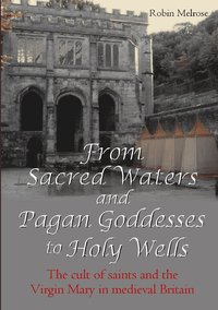 bokomslag From Sacred Waters and Pagan Goddesses to Holy Wells: the Cult of Saints and the Virgin Mary in Medieval Britain