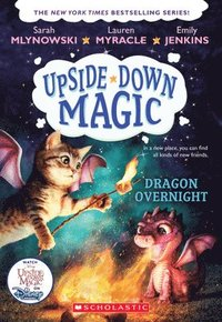bokomslag Dragon Overnight (Upside-Down Magic #4)