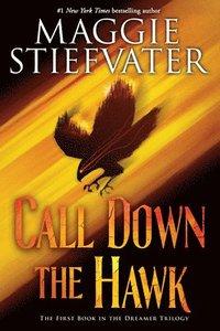 bokomslag Call Down The Hawk (The Dreamer Trilogy, Book 1)