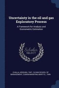 bokomslag Uncertainty in the Oil and Gas Exploratory Process