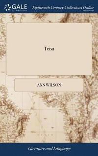 bokomslag Teisa