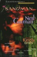 bokomslag Sandman 9: The Kindly Ones