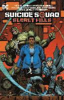 bokomslag Suicide Squad Secret Files