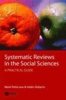 bokomslag Systematic Reviews in the Social Sciences