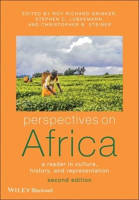 bokomslag Perspectives on Africa: A Reader in Culture, History and Representation, 2n