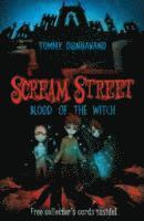 bokomslag Scream Street 2: Blood of the Witch