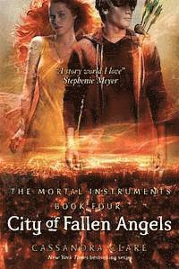 bokomslag City of fallen angels