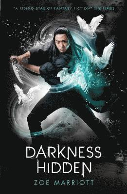 bokomslag The Name of the Blade, Book Two: Darkness Hidden