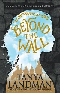bokomslag Beyond the Wall