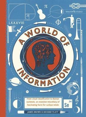 bokomslag A World of Information