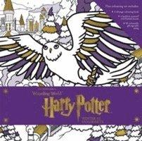 bokomslag Harry Potter Winter at Hogwarts