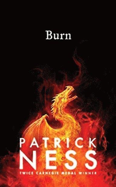bokomslag Burn