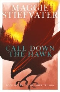bokomslag Call Down the Hawk