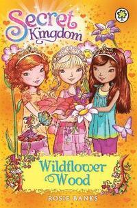 bokomslag Secret Kingdom: Wildflower Wood
