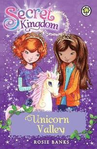 bokomslag Secret Kingdom: Unicorn Valley