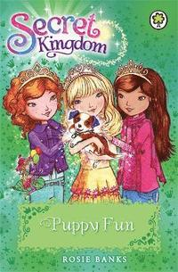 bokomslag Secret Kingdom: Puppy Fun
